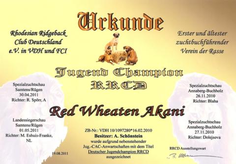 Red Wheaten Akan ist jetzt Deutscher Jugendchampion RRCD