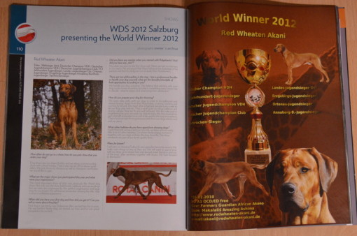 Akani im the European Ridgeback Magazin