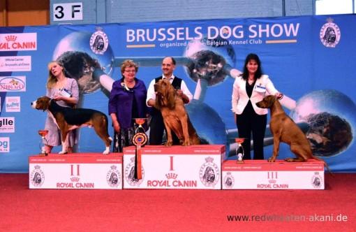 Belgian Winner 2012
