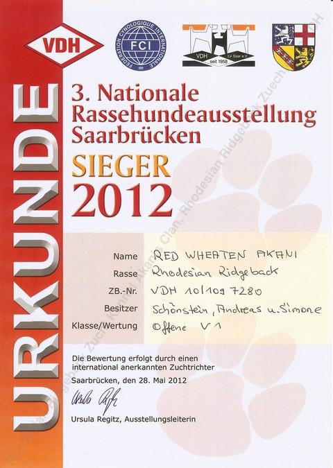 Saarbrücken-Sieger Rhodesian Ridgeback Red Wheaten Akani