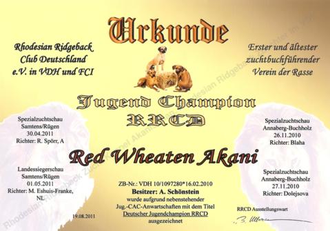 Jugend Champion Club RRCD