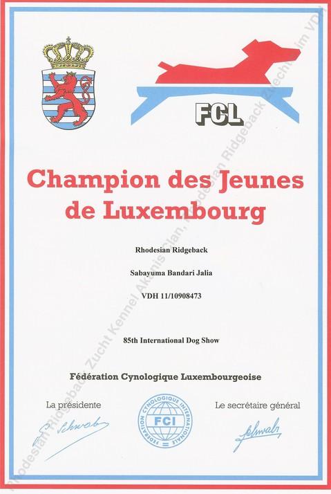 Jugend Champion Luxemburg