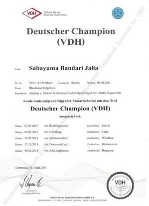 Deutscher Champion Rhodesian Ridgeback Sabayuma Bandari Jalia