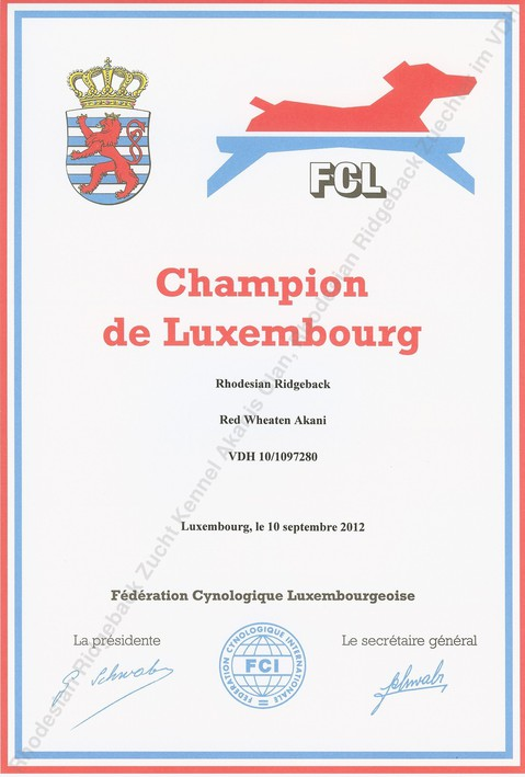 Red Wheaten Akani Champion Luxemburg