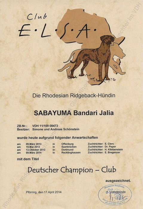 Club Champion Urkunde Rhodesian Ridgeback Sabayuma Bandari Jalia
