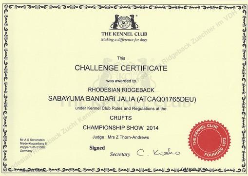 Challenge Certificate