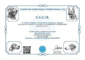 CACIB Luxembourg (LU)