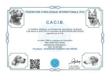 CACIB Mouscron (B)