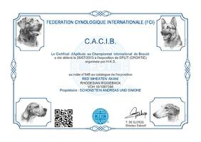 CACIB Split (HR)