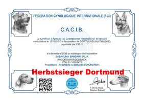 CACIB Dortmund (Herbstsieger)