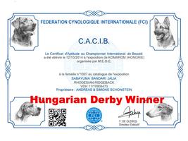 CACIB Jalia Rhodesian Ridgeback Urkunde FCI