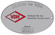 Rhodesian Ridgeback Züchter im VDH Akani´s Clan