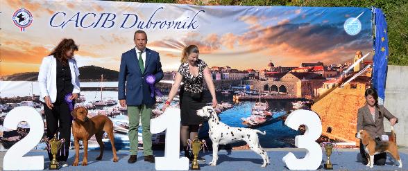 Shaira in Dubrovnik BIG 2