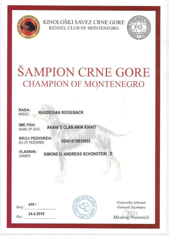 Kiano Champion of Montenegro
