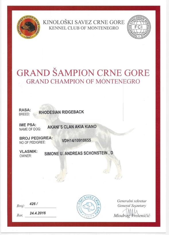 Kiano Grand Champion Montenegro