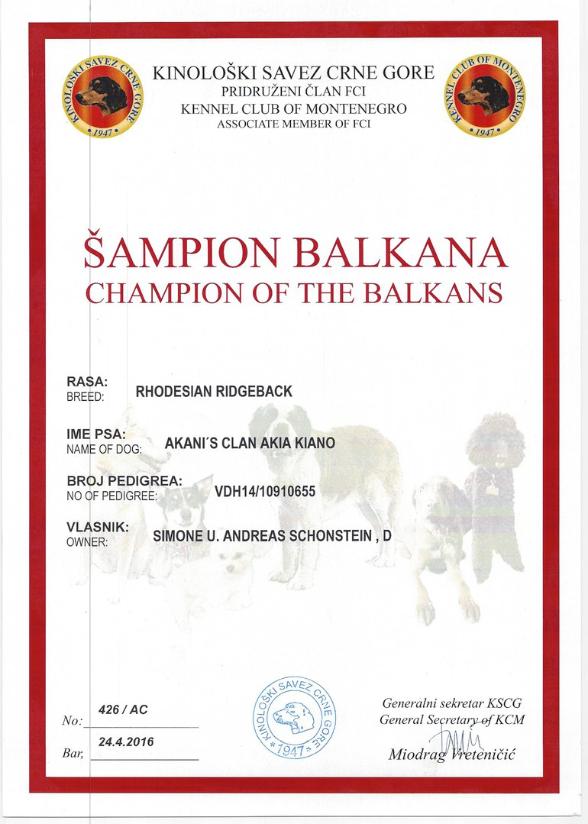 Rhodesian Ridgeback Balkan Champion