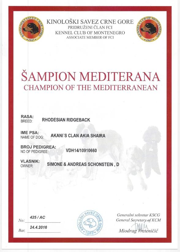 Rhodesian Ridgeback Shaira Mediterran Champion