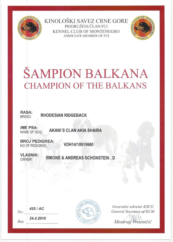 Balkan Champion Urkunde Akanis Clan Akia Shaira