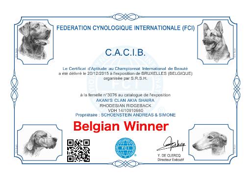 CACIB Brüssel Belgian Winner