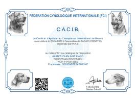 CACIB Zadar 2 (HR)