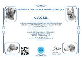 CACIB Zadar 3 (HR)