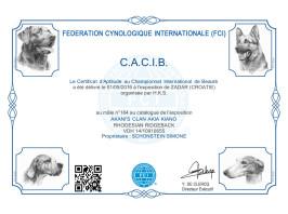 CACIB Zadar 4 (HR)