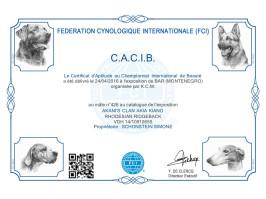 Urkunde FCI CACIB Bar 2 (MNE)