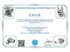CACIB Bar 1 (MNE)
