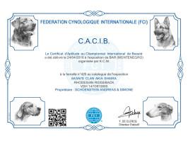 CACIB Bar 2 (MNE)