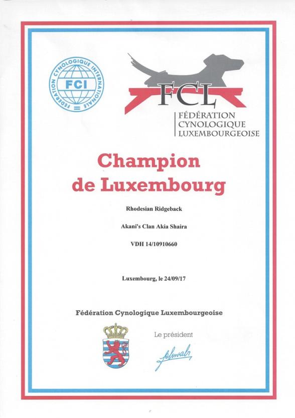 Rhodesian Ridgeback Shaira Luxemburg Champion