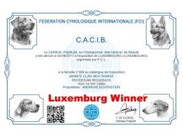 CACIB Luxemburg
