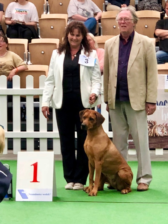 Rhodesian Ridgeback best in Group Akani´s Clan Akia Shaira