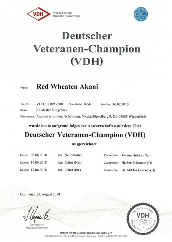 Red Wheaten Akani Veteranen Champion VDH