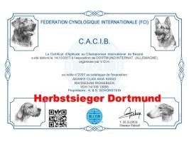 CACIB Dortmund Dogshow