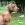 Rhodesian Ridgeback Welpe 14 Wochen alt